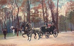 lady riding in coach pulled by two horses, one grey and one brown