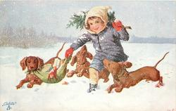 three dachshunds jump around boy carrying Xmas tree in snow, one helps carry presents