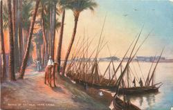 BANKS OF THE NILE, NEAR CAIRO