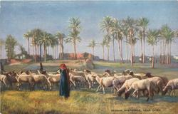 BEDOUIN SHEPHERDS, NEAR CAIRO