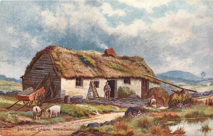 AN IRISH CABIN, ROUNDWOOD