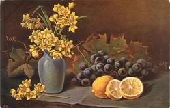 vase of daffodils left lemon and two half lemons in front of grapes to right
