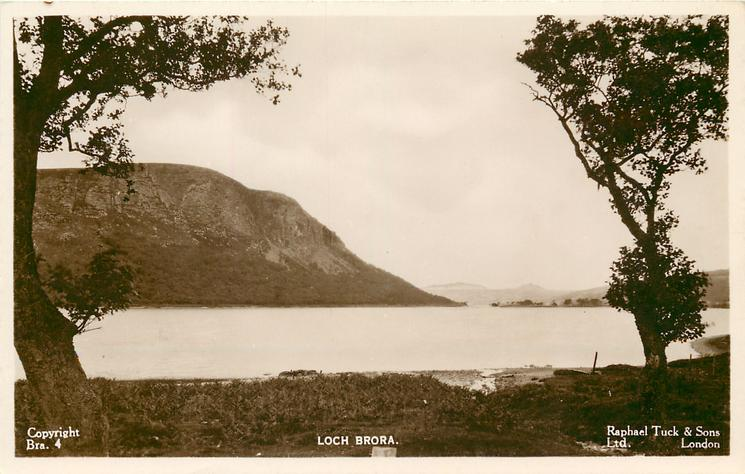 LOCH BRORA  trees close on either side of card