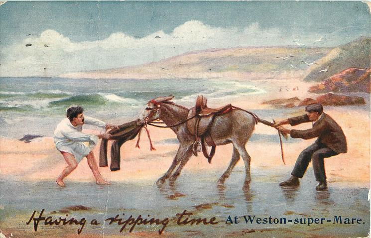 HAVING A RIPPING TIME  donkey pulls mans pants, another man pulls donkeys tail