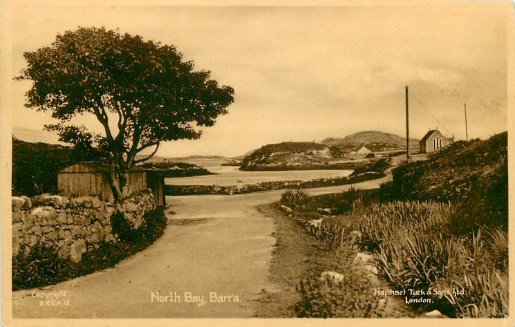 NORTH BAY tree on left
