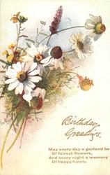 daisies and other flowers , stems to left
