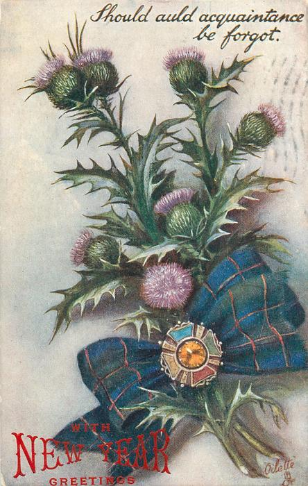 SHOULD AULD ACQUAINTANCE BE FORGOT-thistles in flower, gemstone on bow,stalks to right