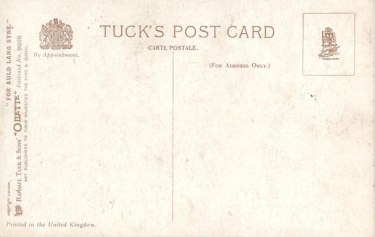 FOR AULD LANG SYNE  blue campanulas, gemstone on red tartan bow