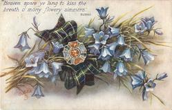 blue campanulas, tartan bow with gemstone, stalks left