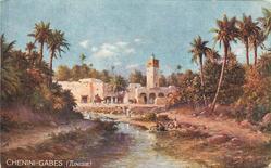 CHENINI-GABES (TUNISIE)