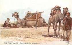 CAMELS AND THEIR ATTENDANTS