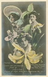 ORCHID, 3 insets, MARIE STUDHOLME, MARY FRASER, MABEL HIRST, QUAINT, RICH AND BEAUTIFUL/VIEW