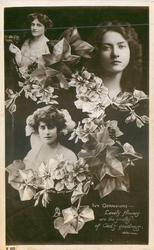 IVY GERANIUMS, 3 insets, MAIE ASH, MAUDE FEALY, KITTY GORDON, LOVELY FLOWERS//GOODNESS