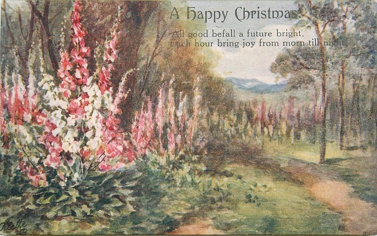 A HAPPY CHRISTMAS  many coloured foxgloves left & back