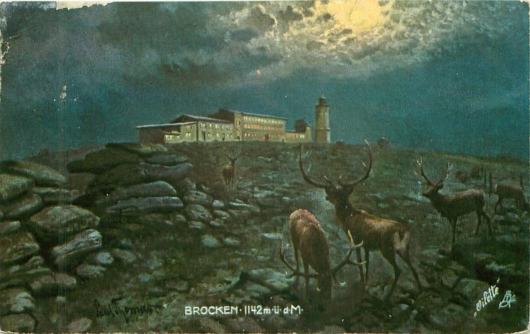 BROCKEN-1142M.U.D.M. night scene, stags lower right
