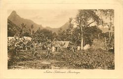 NATIVE SETTLEMENT, RAROTONGA