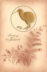 GREETINGS FROM NEW ZEALAND  embossed inset gilt GREAT SPOTTED KIWI