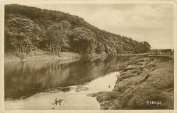 THE LUNE