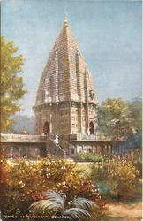 TEMPLE AT RAMNAGAR (plants and ferns in foreground)