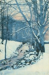 snow & wintery trees, stream runninng from centre back to left front