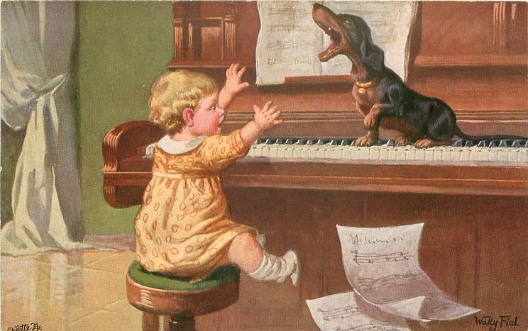 child and dachshund playing piano, dachshund  sitting on piano