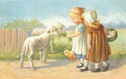 two girls, one holding grass for two lambs, chick below, other girl with basket of eggs stands close & observes
