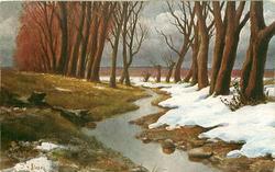 DER WALDBACH  melting snow, trees, steam