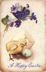 chick at left facing right, violets at top left