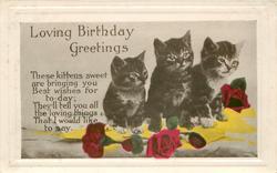 LOVING BIRTHDAY GREETINGS  verse, three kittens