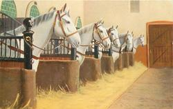 STATE STABLES