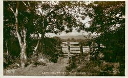 LEITH HILL FROM CAPEL (SURREY)