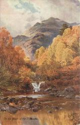 IN THE HEART OF THE TROSSACHS