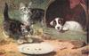 two kittens, a plate and a dog looking out  of a barrel