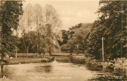 THE MILL POOL, HORSTEAD