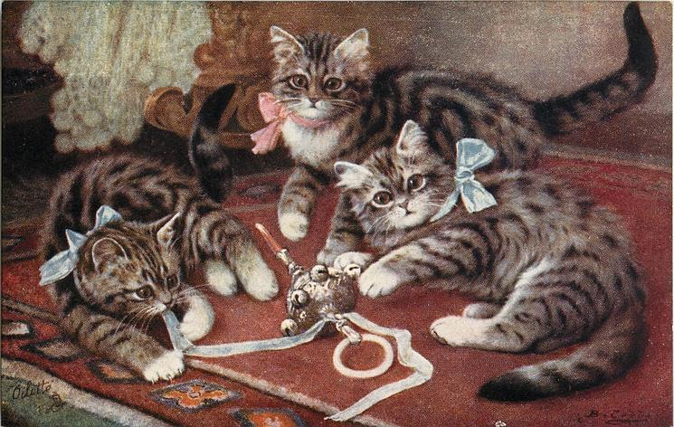 three kittens, middle one has pink bow, others have blue bows, play with ribbon and toy
