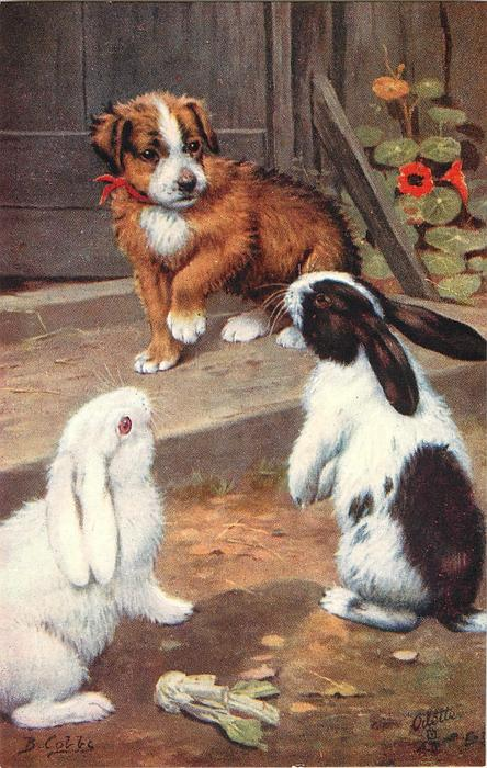two rabbits, puppy with red ribbon round neck on step