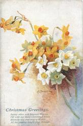 CHRISTMAS GREETINGS  yellow/white daffodils/narcissi