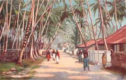 CEYLON, ROAD NEAR COLOMBO