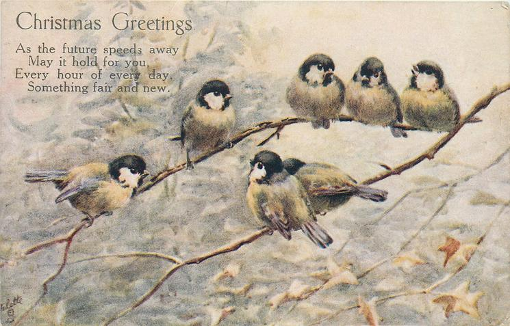 CHRISTMAS GREETINGS  (seven great tits on branch)