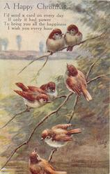 A HAPPY CHRISTMAS   (seven nightingales on branch)