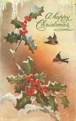 two robins in flight,  holly left
