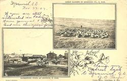 ABERDEEN, 2 insets SHEEP RAISING IN EDMUNDS CO.S. DAK./MARKETING WOOL AT IPSWICH, S. DAK