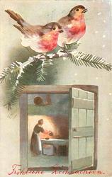 inset open door with woman cooking by fire inside, two robins above on snowy evergreen branch