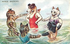 four cats holding hands around dog, all standing in sea