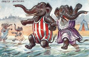 two elephants, hand in hand, dancing in the sea, two others splashing in background