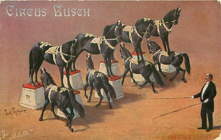 troop of eight black circus horses
