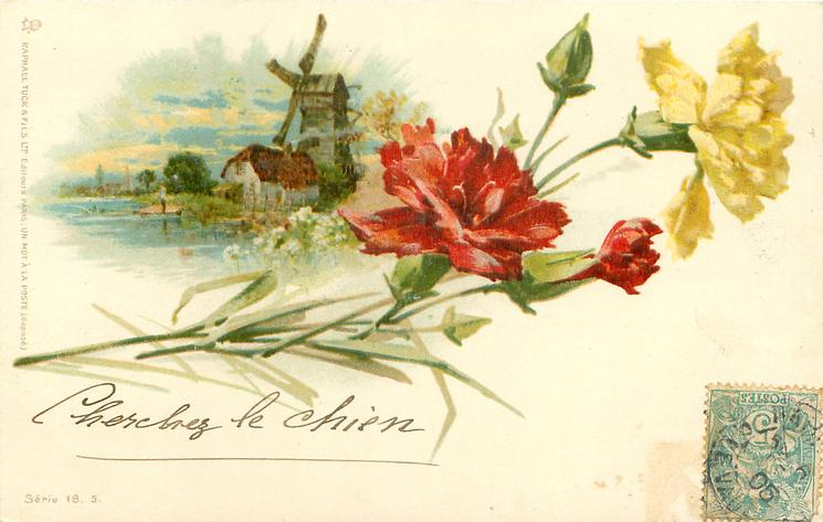 windmill behind left, yellow & red carnations