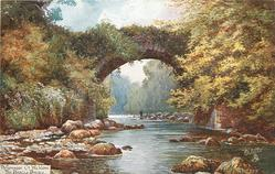 THE DARGLE BRIDGE