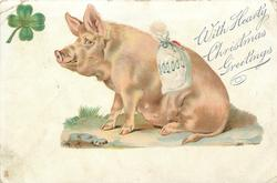 WITH HEARTY CHRISTMAS GREETINGS  crouching pig looking up at 4 leaf clover, bag of coins