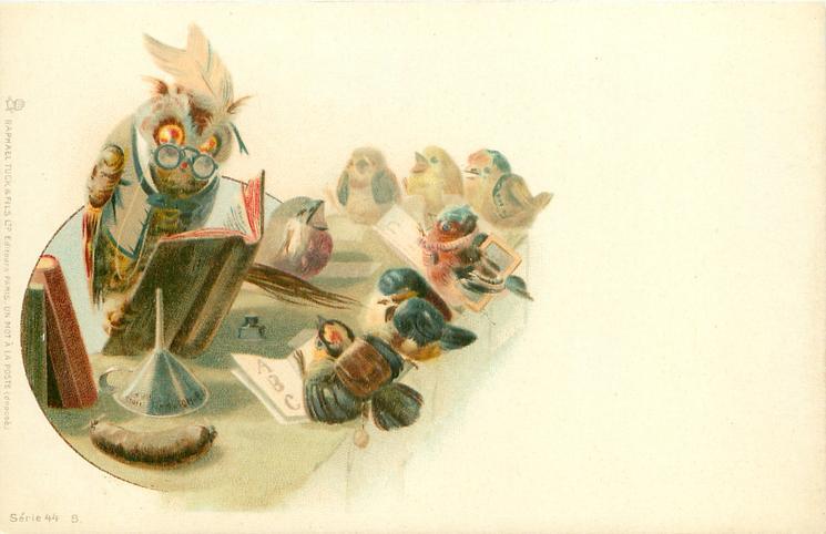 schoolteacher owl attempts to teach seven tits
